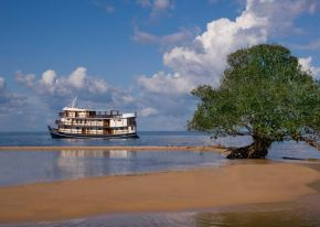 Immersion en Amazonie : croisière luxe à bord de l'Amazon Dream