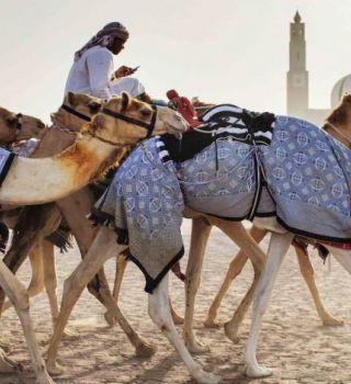 meilleurs sites de rencontres en ligne Dubaï