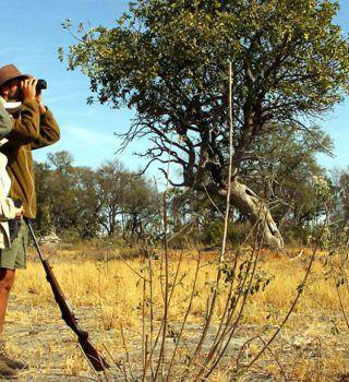rencontres en ligne Botswana afrodisiac site de rencontre